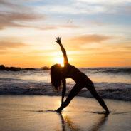 Atelier de gymnastique / Yoga